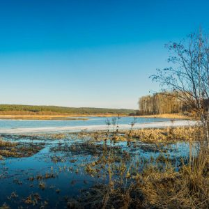 Весеннее фото Артинского пруда.